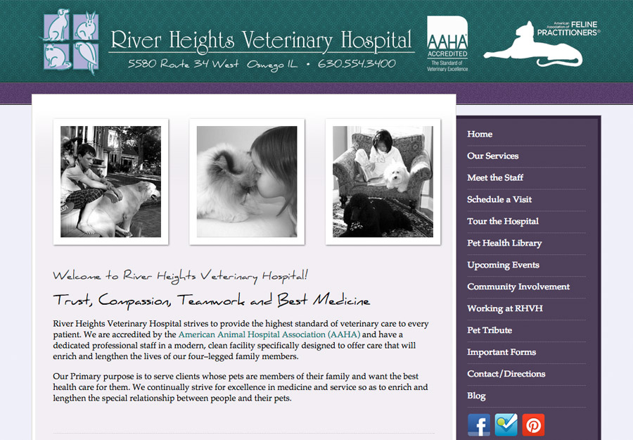 Veterinarian Web Design
